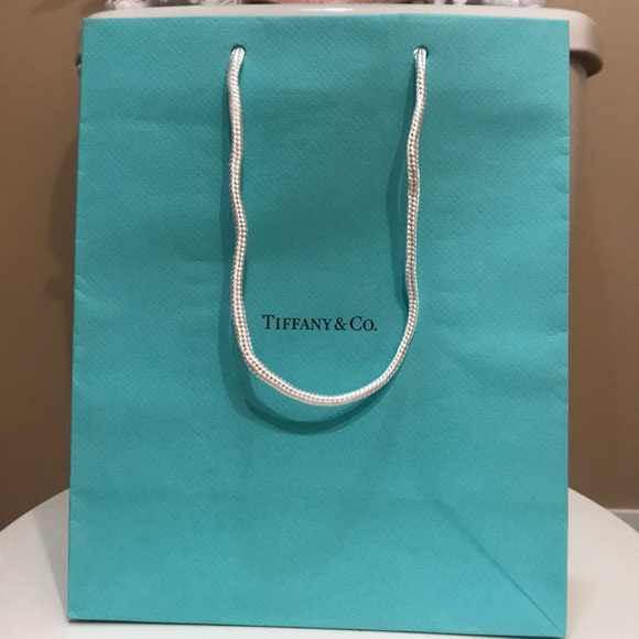 Tiffany & Co. Other - 🌸NEW🌸 Tiffany & Co gift bag